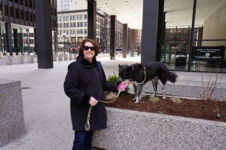 We walked by Federal Building twice.  They had these very nice planters with boxwood shrubs, it was very easy for a young Border collie to jump up into the planters to leave messages on the boxwoods.