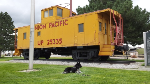 The  Union Pacific Railroad is still going strong...they have three tracks going through Cozad.  Their cabooses, though, are a relic of the past.