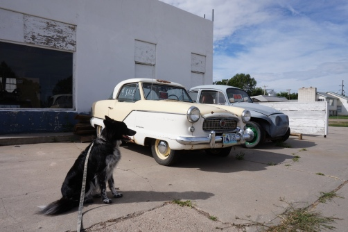 My Dad made a brief stop in Lingle, Wyoming to document a 1950's Nash Metropolitan, FOR SALE. Derelict automobiles are a common sight in the rural areas of the American West.