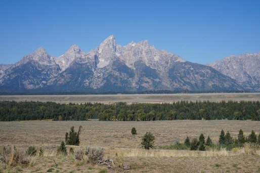The GRAND TETONS as viewed from one of the many wayside parking areas along US 26.