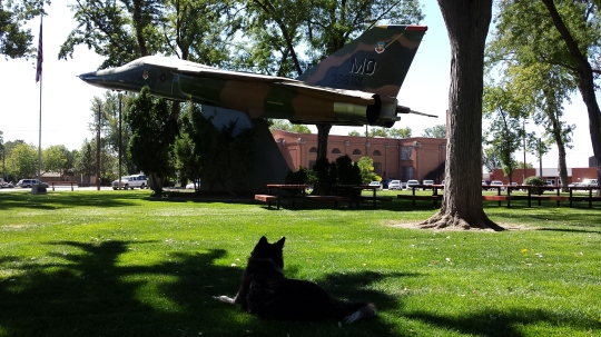 This is an F-111 fighter-bomber, later relegated to a bomber.  My Dad remembers these from his Vietnam days.